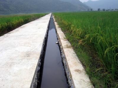 农业综合开发土地治理项目——临岐进贤溪山区小流域农业生态工程项