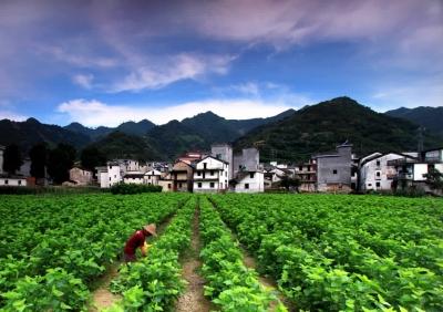 风景区,并以此带动威坪镇全镇域的旅游现代服务业