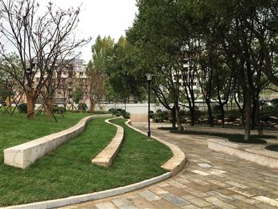 在绿化种植方面,保留了原有的香樟林,对部分树形好的观花,观叶植物
